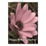 cumpleaños femenino, feliz, madre felicitacion