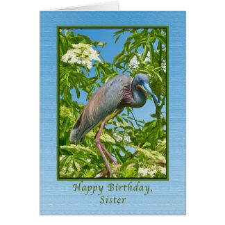 Cumpleaños, hermana, garza de Tricolored en una Tarjeta De Felicitación