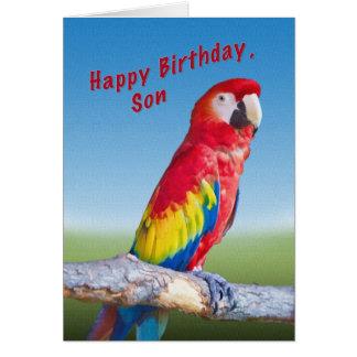 Cumpleaños, hijo, loro del Macaw Tarjeta De Felicitación