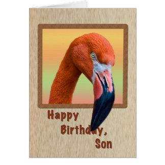 Cumpleaños, hijo, pájaro del flamenco tarjeta de felicitación