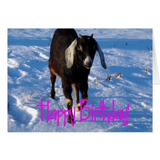 Cumpleaños, Minnie la cabra en nieve Felicitacion