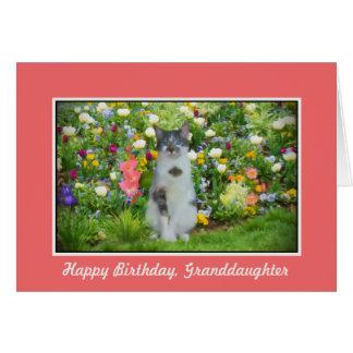 Cumpleaños, nieta, gato entre las flores tarjeta de felicitación