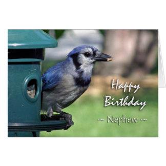 Cumpleaños para el sobrino, arrendajo azul en el tarjeta de felicitación