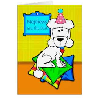 Cumpleaños para el sobrino, caniche blanco en las tarjeta de felicitación