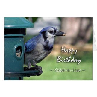 Cumpleaños para la cuñada, arrendajo azul en el tarjeta de felicitación