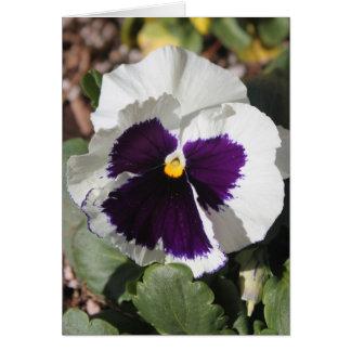 Cumpleaños púrpura de la cuñada del ángel tarjeta de felicitación