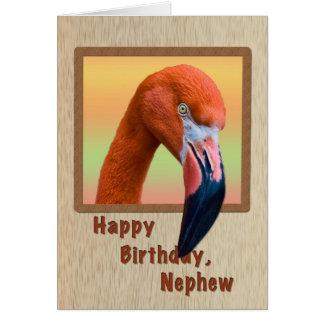 Cumpleaños, sobrino, pájaro del flamenco tarjeta de felicitación