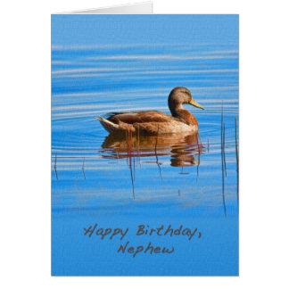 Cumpleaños, sobrino, tarjeta del pato del pato sil