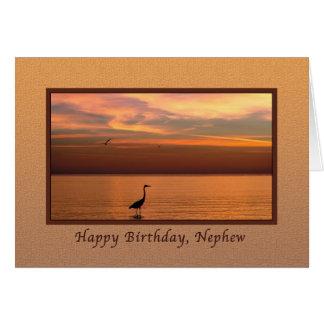 Cumpleaños, sobrino, vista al mar en la puesta del tarjeta de felicitación