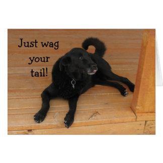 Cumpleaños tardío del amante del perro tarjeta de felicitación