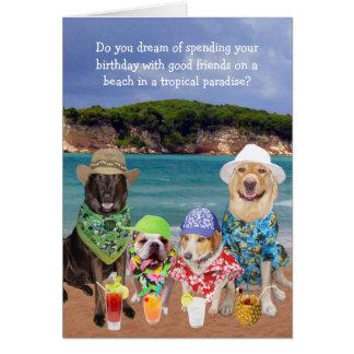 Cumpleaños tropical del paraíso de los perros tarjeta de felicitación