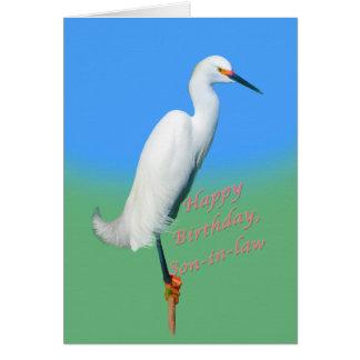 Cumpleaños, yerno, Egret nevado en un miembro Tarjeta De Felicitación