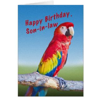 Cumpleaños, yerno, loro del Macaw Tarjeta De Felicitación