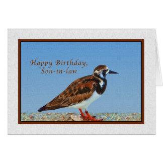 Cumpleaños, yerno, pájaro del Turnstone rubicundo Felicitación
