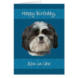Cumpleaños, yerno, perro de Shih Tzu Tarjeta De Felicitación
