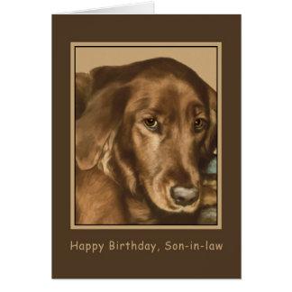 Cumpleaños, yerno, perro irlandés de oro tarjeta de felicitación