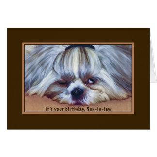 Cumpleaños, yerno, perro soñoliento de Shih Tzu Felicitación