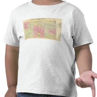 Custer y el condado de Logan, Nebraska Camisetas