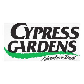 Cypress cultiva un huerto el parque de la aventura tarjeta fotografica