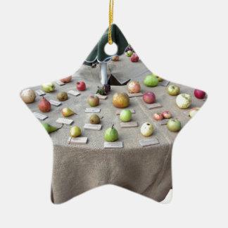 Da fruto la colección en la tabla adorno de cerámica en forma de estrella