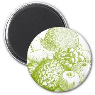 Da fruto retro sano de la comida del vintage imán