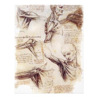 da Vinci -- Bosquejo del hombro Folleto 21,6 X 28 Cm
