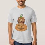 Dachshund de pelo largo de Halloween Camisetas