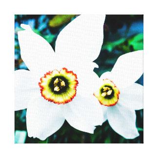 daffs de la primavera lienzo
