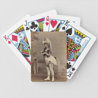 Daguerreotype/foto del traje del caballo del Victo Barajas