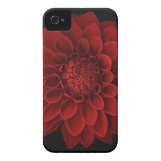 Dalia 4 iPhone 4 Case-Mate coberturas