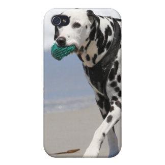 Dalmatian - a solas iPhone 4 carcasas