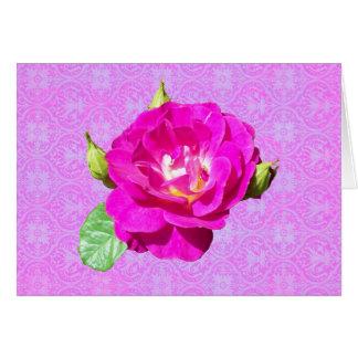 Damasco color de rosa violeta tarjeta de felicitación