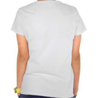 DC fibro 2014 Camiseta