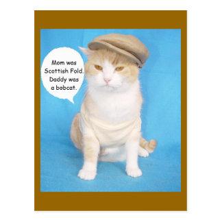 Dé a gatito de Bubba una línea Tarjeta Postal