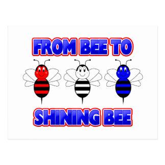 De abeja a la postal brillante de la abeja