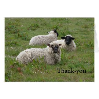 De agradecimiento de las ovejas tarjeta de felicitación