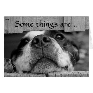 De agradecimiento del perrito tarjeta pequeña