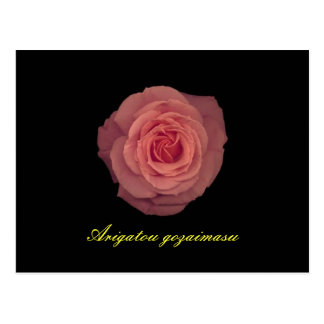 De agradecimiento en japonés en color de rosa postal