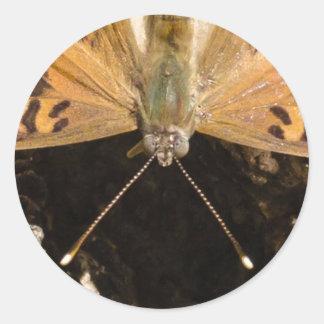 De la mariposa cierre para arriba pegatina redonda