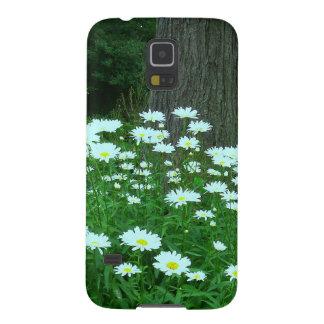 De las tarimas galaxia S5 de Samsung de la caja a Funda Galaxy S5