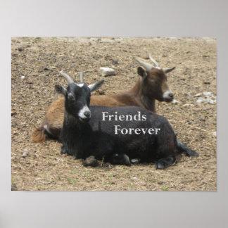 De los amigos cabras para siempre poster