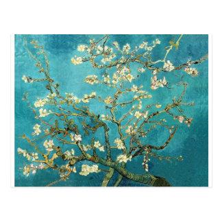 ~ de los flores de la almendra del ~ de Van Gogh Postal
