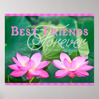 De los mejores amigos pares rosados magníficos de póster