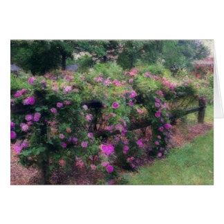 """De """"rosas rosados conexión en cascada sobre la tarjeta pequeña"""