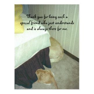 Debajo de la cama tarjetas postales