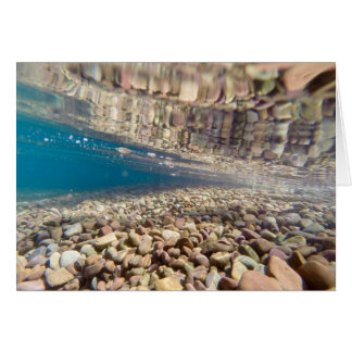 Debajo del agua en el lago McDonald Tarjeta De Felicitación