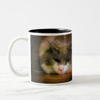 Debe haber permanecido en el gato Meme de la cama Taza De Café De Dos Colores