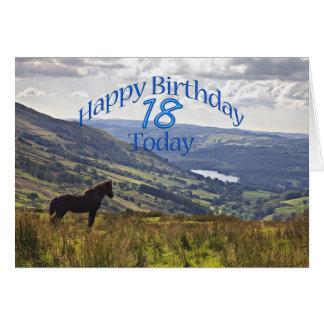 Décimo octava tarjeta de cumpleaños del caballo y