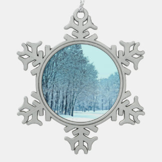 """Decoración """"congelada"""" del copo de nieve del"""