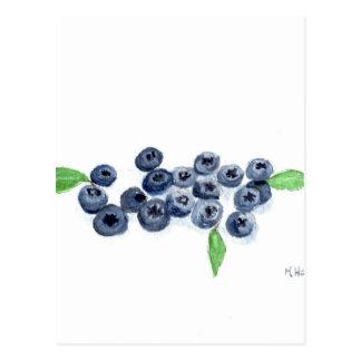 Decoración de la cocina de las frutas de los postal